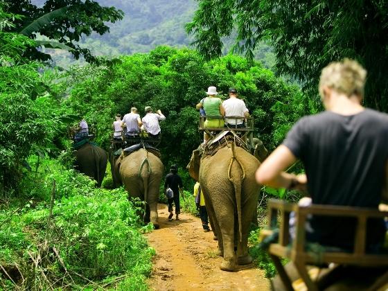 montar-un-elefante