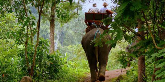 elephant-riding-mae-hong-son